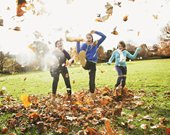 autumn - Royalty Free Stock Images - Veer.com