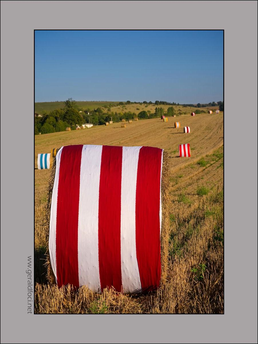All sizes | Land Art Viking, essai 2010 | Flickr - Photo Sharing!