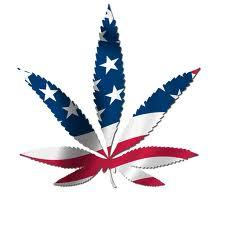 war on drugs - Google Search