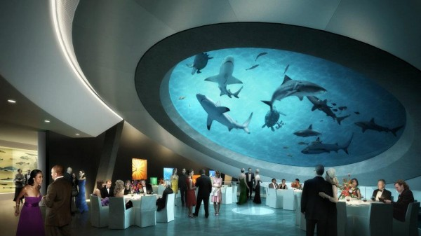 "Architizer Blog » New Miami Museum Will Have ""Atrium"" Filled with Sharks"