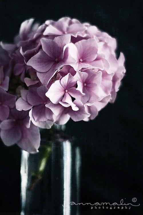 floral / Helt Enkelt: Thank you...