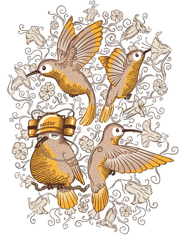 THE LAZY HUMMINGBIRD | PIKTED