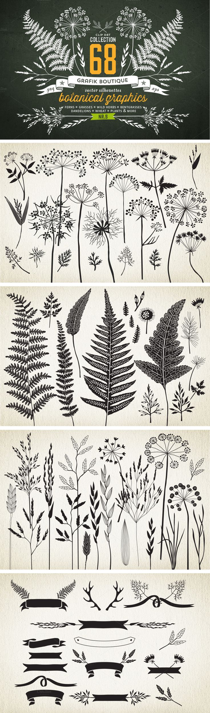 Botanical elements. More than 68
