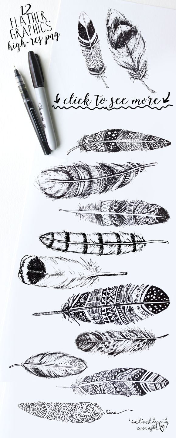 Boho rustic feathers