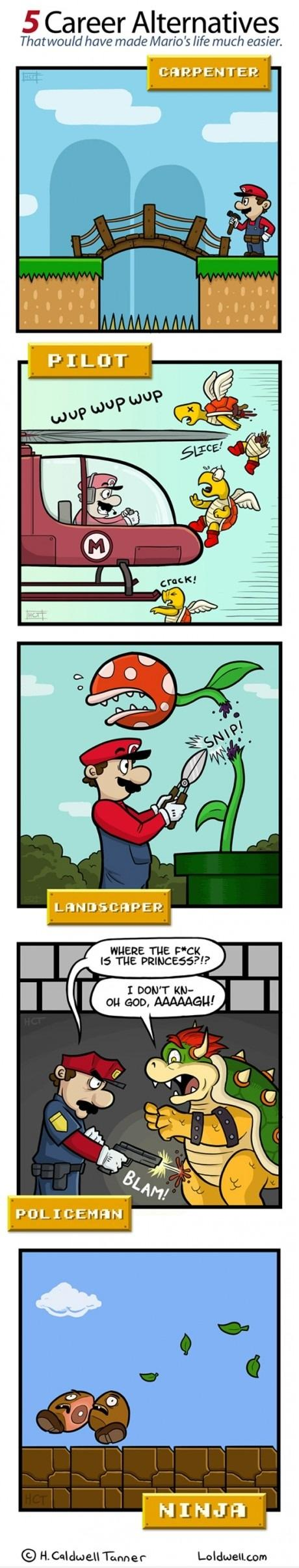5 Career Alternatives for Mario | LOL Daily Fun