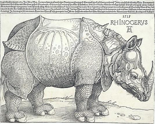 The Metropolitan Museum of Art - The Rhinoceros