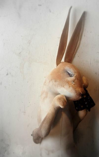 Mister Finch | bunnylicious