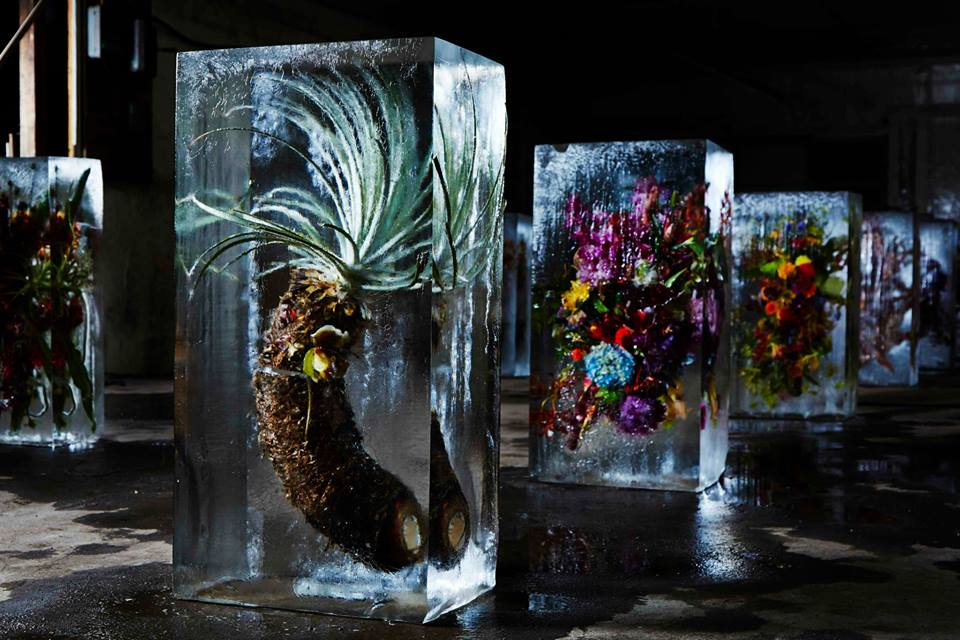 Iced Flowers: Exotic Floral Bouquets Locked in Blocks of Ice by Makoto Azuma - Cretíque