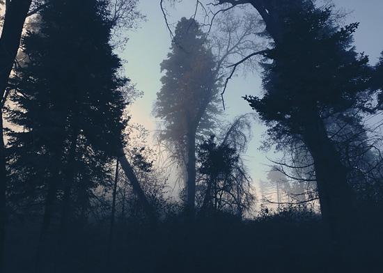 Landscape Photography by Shane Hawk | Inspiration Grid | Design Inspiration