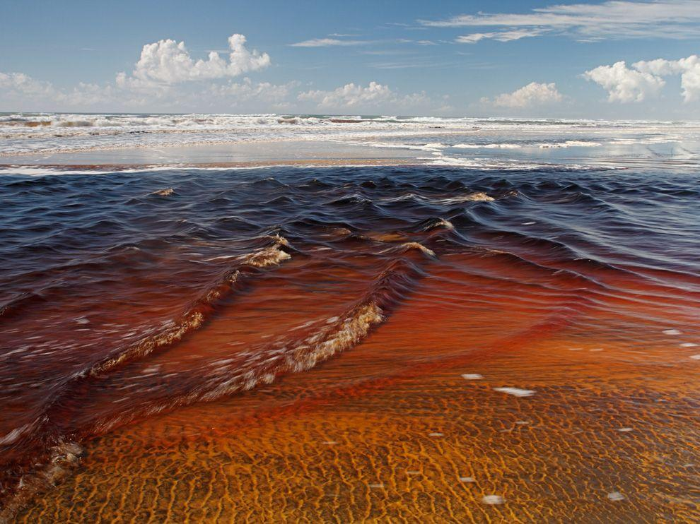 Fraser Island Picture – Landscape Wallpaper – National Geographic Photo of the Day