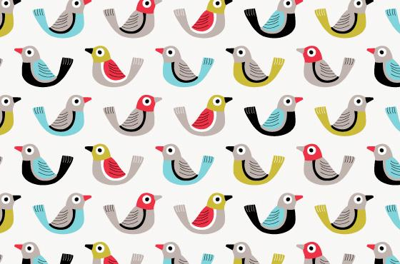 Cutedrop » Portfolio inspiracional: Box of birds
