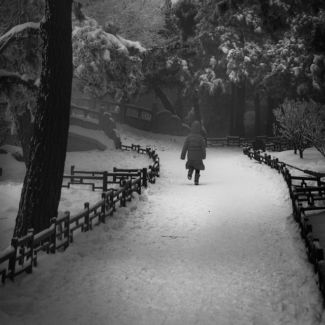 China Winter Dream.. by lwc71 | Shadowness