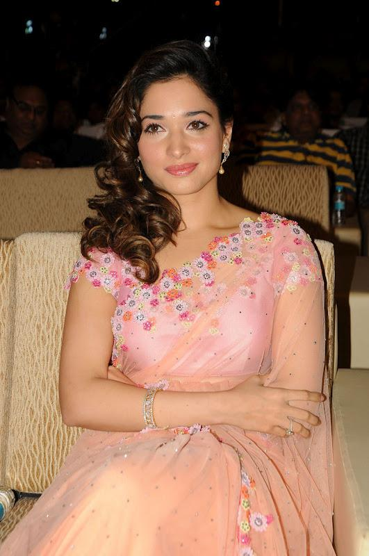 Gorgeous Tamanna in Floral Design Netted Chiffon Saree in Hyderabad | (Best Blogger Themes )