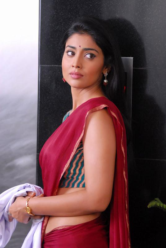 Shriya Saran in Red Chiffon Saree with Sleeveless Blouse in Hospital | (Best Blogger Themes )