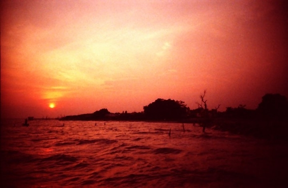 The Colors of Nature in Analogue Lifestyle in Magazine - Lomography