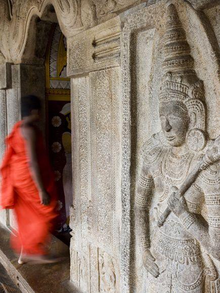 Sri Lanka Photos: Best of the World -- National Geographic