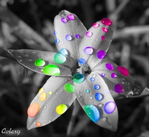 technicolor picture on VisualizeUs