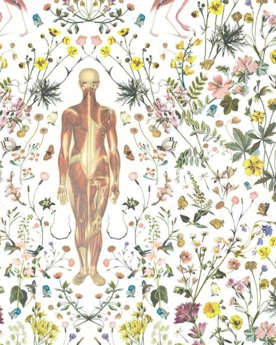 I like skeletons. / Beautiful anatomical flowery wallpaper Jonny Macali for Gabriel Valdivieso design.