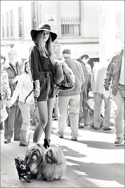 Rastro de Madrid   Flickr - Photo Sharing!
