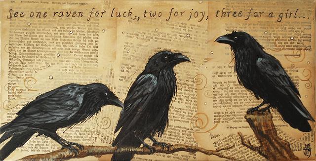 Ravens (Texas bound) | Flickr - Photo Sharing!