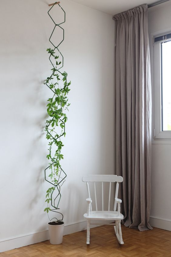 Just a concept photo, but an interesting modular design. You could make it out of coat hangers.   Gardening   Pinterest