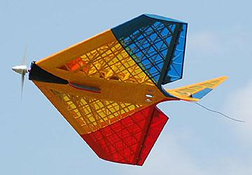 Airfield Models - Thwing! - Radio Control Delta Flying Wing