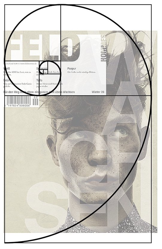 What Is The Golden Ratio? What You Need to Know and How To Use It on Inspirationde