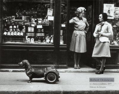 Resultados da Pesquisa de imagens do Google para http://cache2.allpostersimages.com/p/LRG/28/2826/R5POD00Z/posters/doisneau-robert-le-chien-a-roulettes-c-1977.jpg