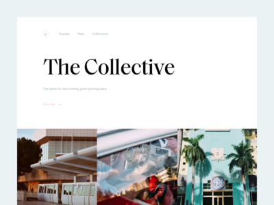 The Collective by Vedad Siljak - Dribbble
