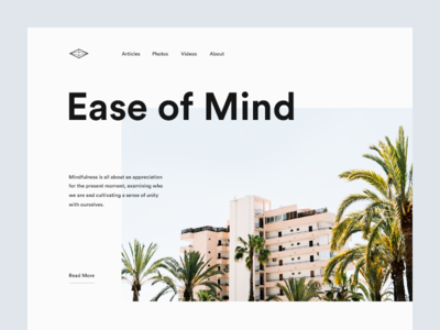 Ease of Mind by Vedad Siljak - Dribbble