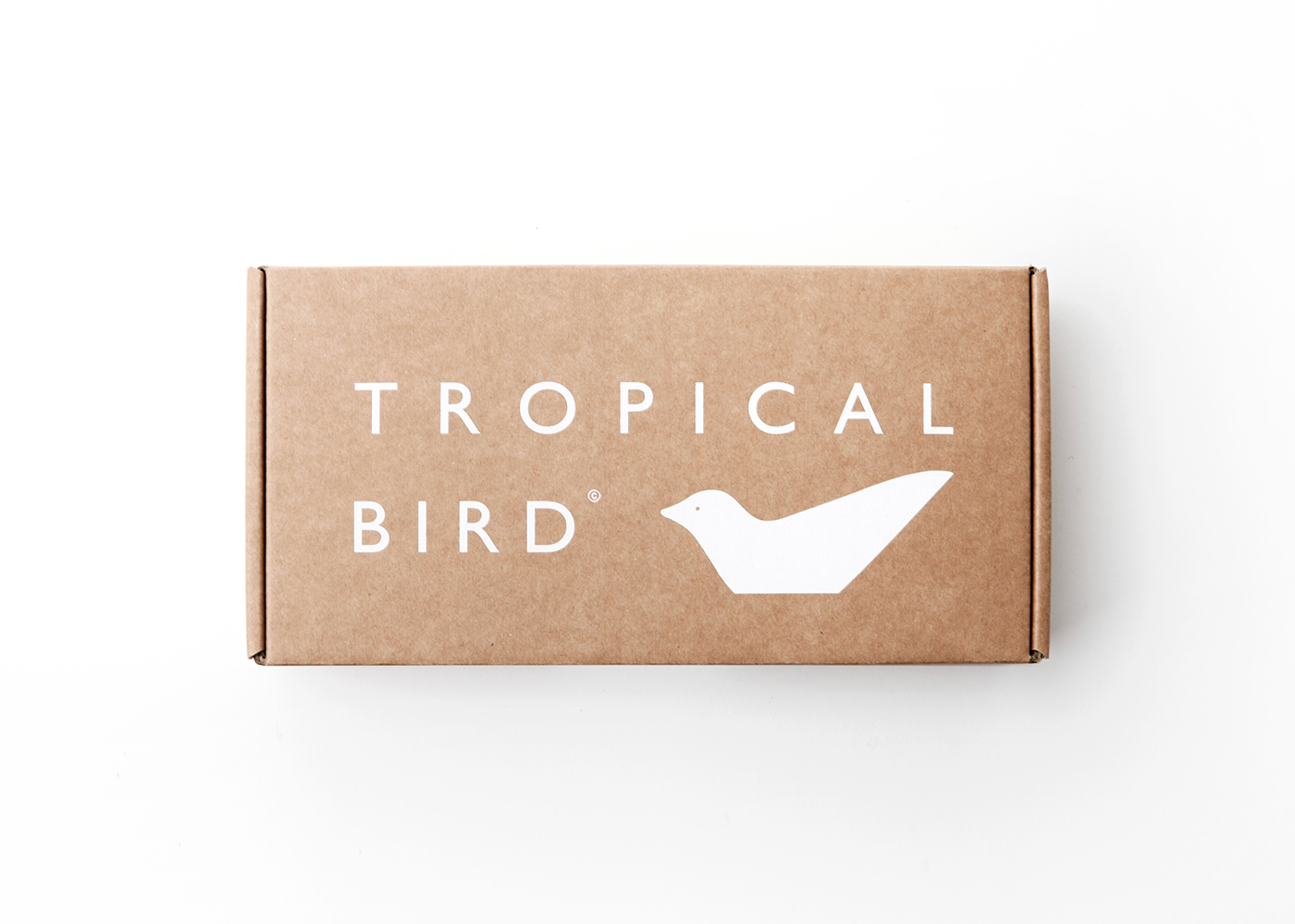 Tropical Bird on