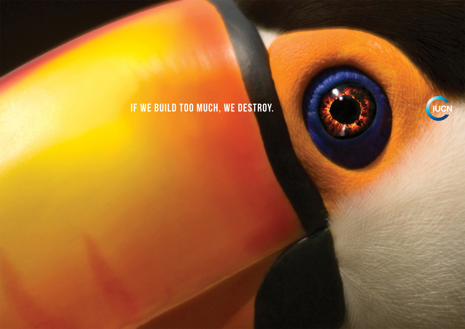 "IUCN: Toucan | Ads of the Worldâ""¢"