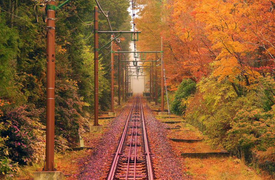 Fall Bridge by Darrel Summers - Photo 20398533 / 500px