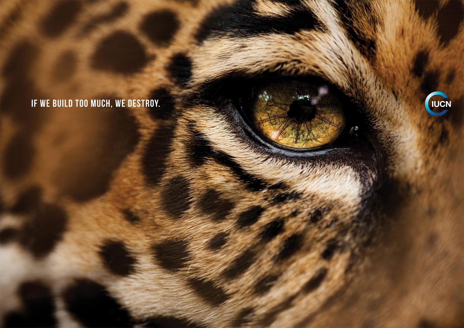 "IUCN: Jaguar   Ads of the Worldâ""¢"