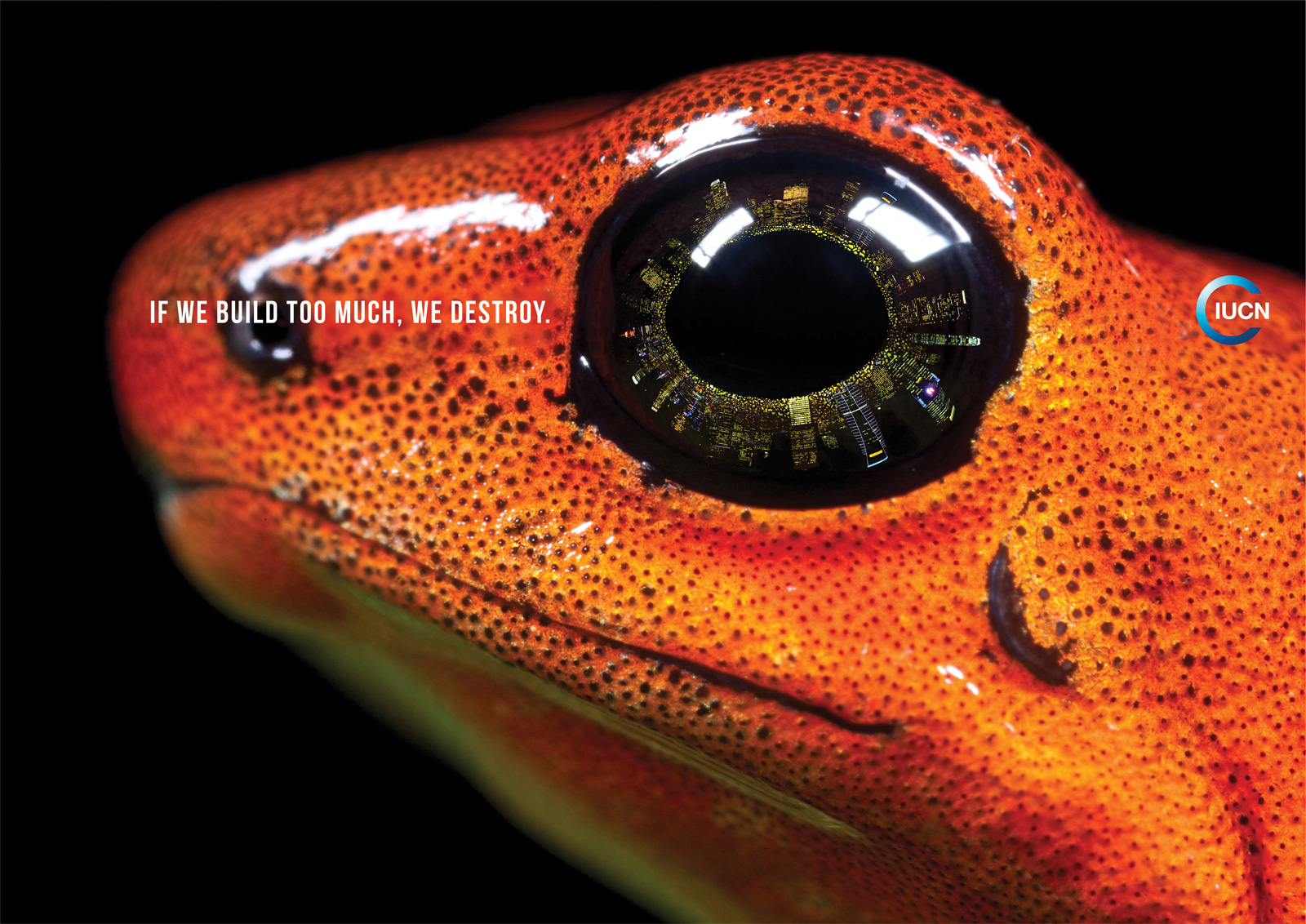 "IUCN: Frog | Ads of the Worldâ""¢"