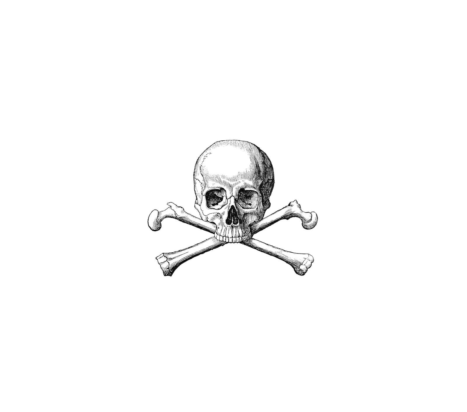 skull-crossbones-1600.jpg (1600×1412)