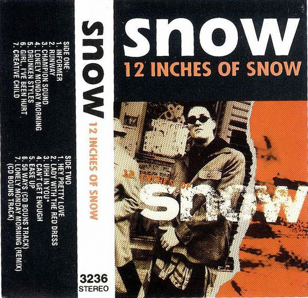 12 inches of snow - Google Search