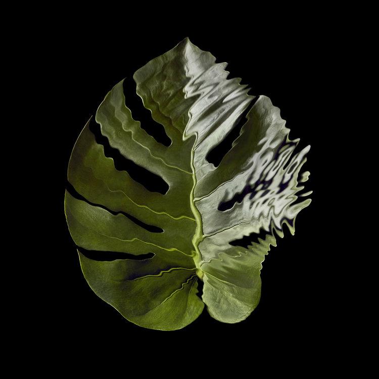 Art Photography — JOSHUA CAUDWELL •• Still Life Photographer In London, Paris, New York, Milan, LA, International •• product photography