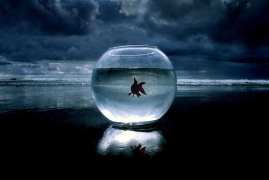 Stunning Conceptual Photography Ideas