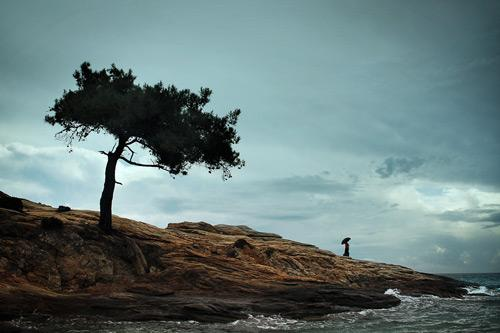40 Outstanding Examples of Conceptual Photography | Inspiration