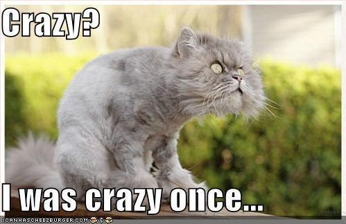 Crazy? - Imgur