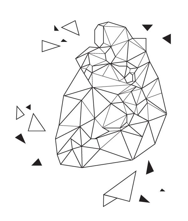 Google ?? http://grantkilloran.com/wordpress/wp-content/uploads/2012/03/wireframe_heart.jpg ?????