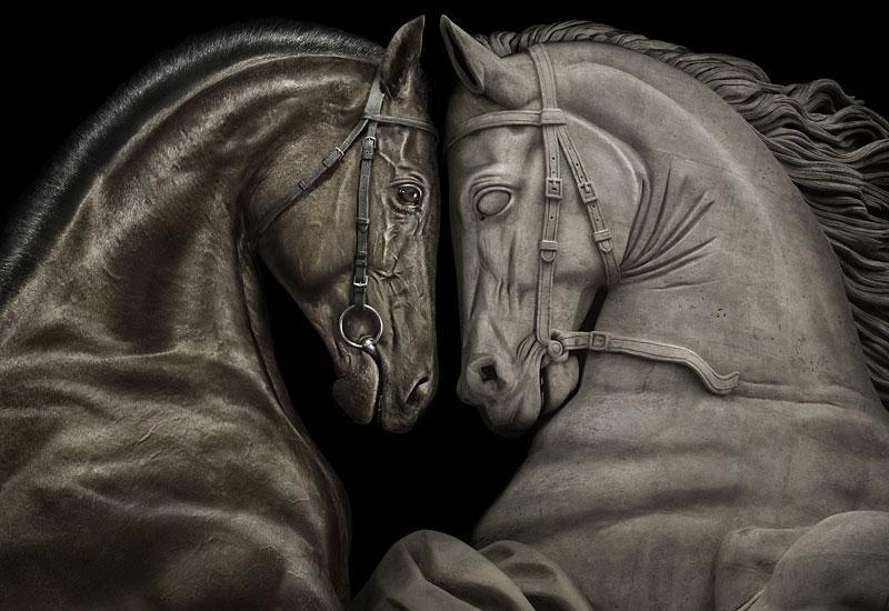 Peter Lippmann :: photographer :: FRANCE GALOP /