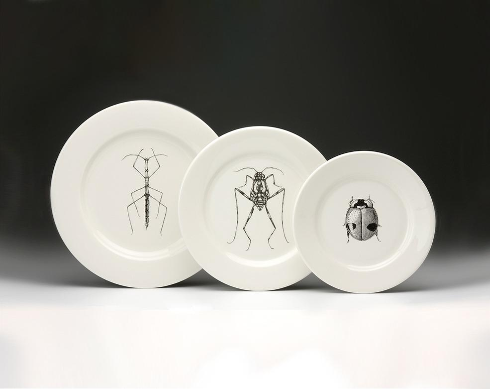 Dinnerware Set: Insects - Dinnerware Plates - Plates - Dinnerware - Types