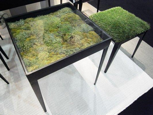 Fancy - Real Moss Table + Grass Stool by Ayodhya