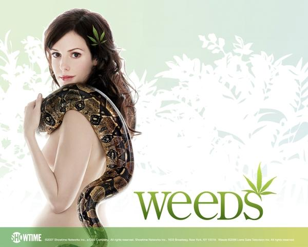 topless,snakes snakes topless marylouise parker weeds tv series 1280x1024 wallpaper – TV Series Wallpaper – Free Desktop Wallpaper
