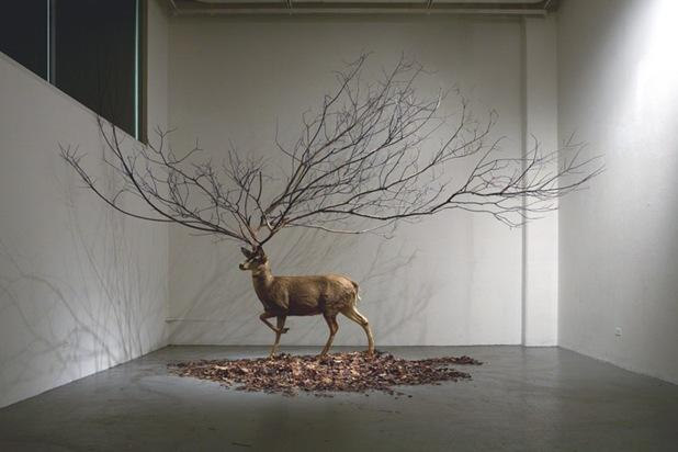 Installation-art-6623.jpg (618×412)