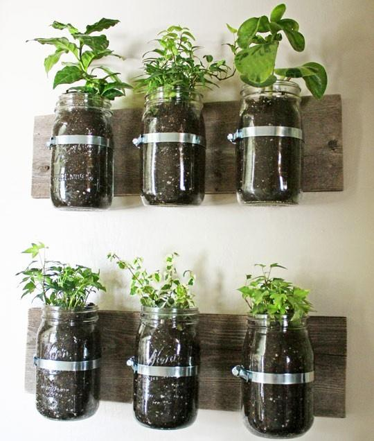 Products I Love / indoor herb garden indoor herb garden indoor herb garden