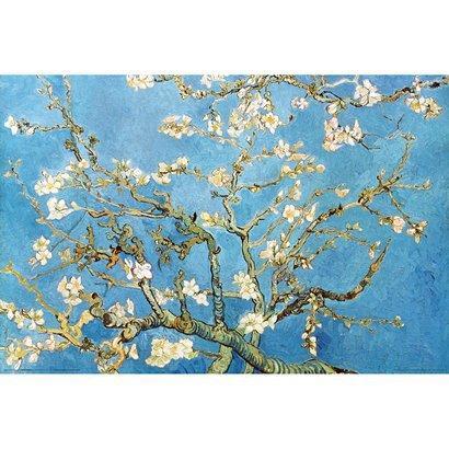 Unframed Posters - Van Gogh