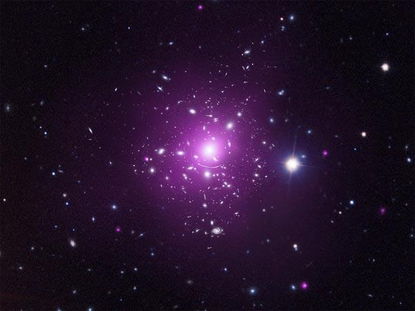 Dark Matter Hits the Average Human Once a Minute?
